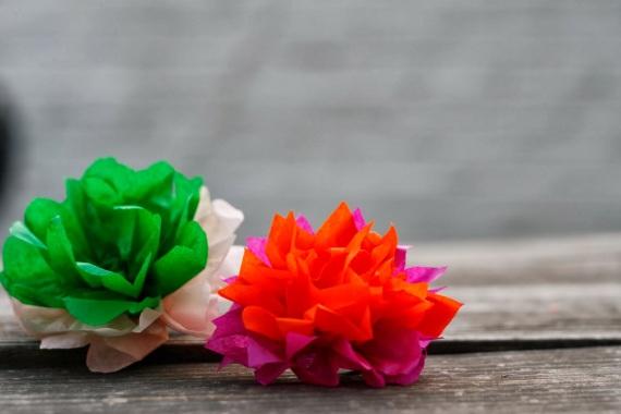 flowers intro